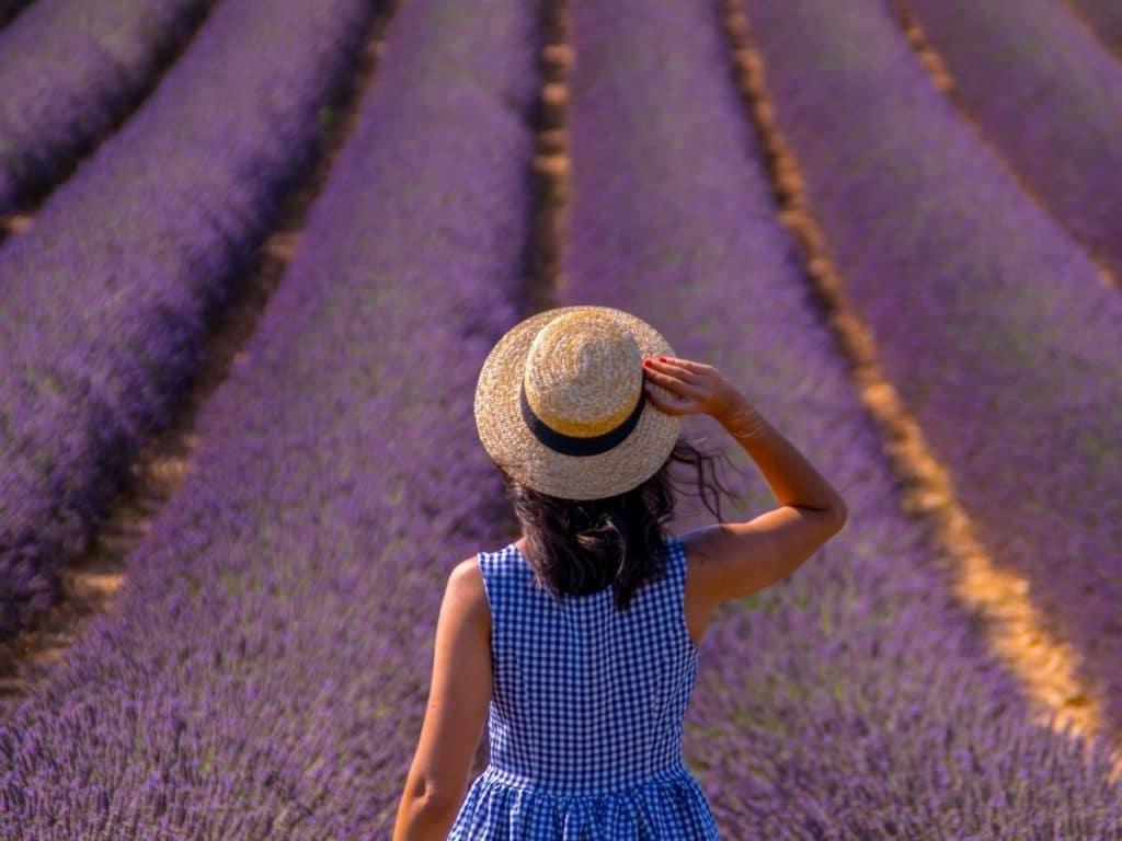 lavender fieald framing