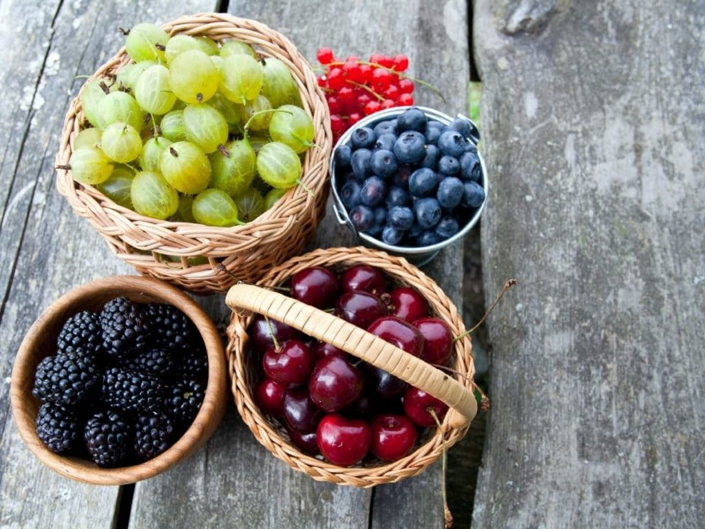 colorful summer food